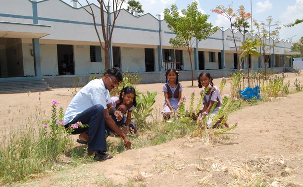 manuring the school garden